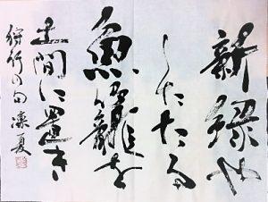 講師作品 鷹羽狩行の句(半切1/3サイズ)